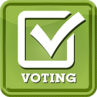 Online Secure Voting